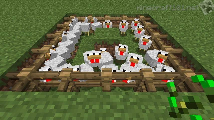 Minecraft_chicken_coop